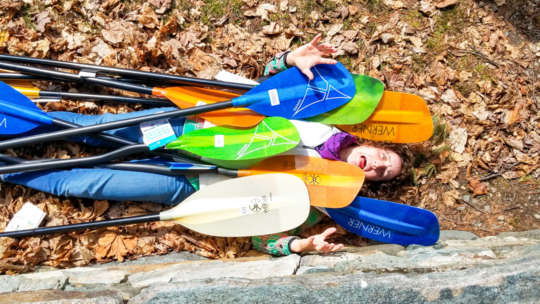 Paddles on the ground