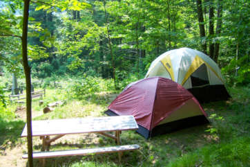 Two tents pitched next to a picnic table in the woods