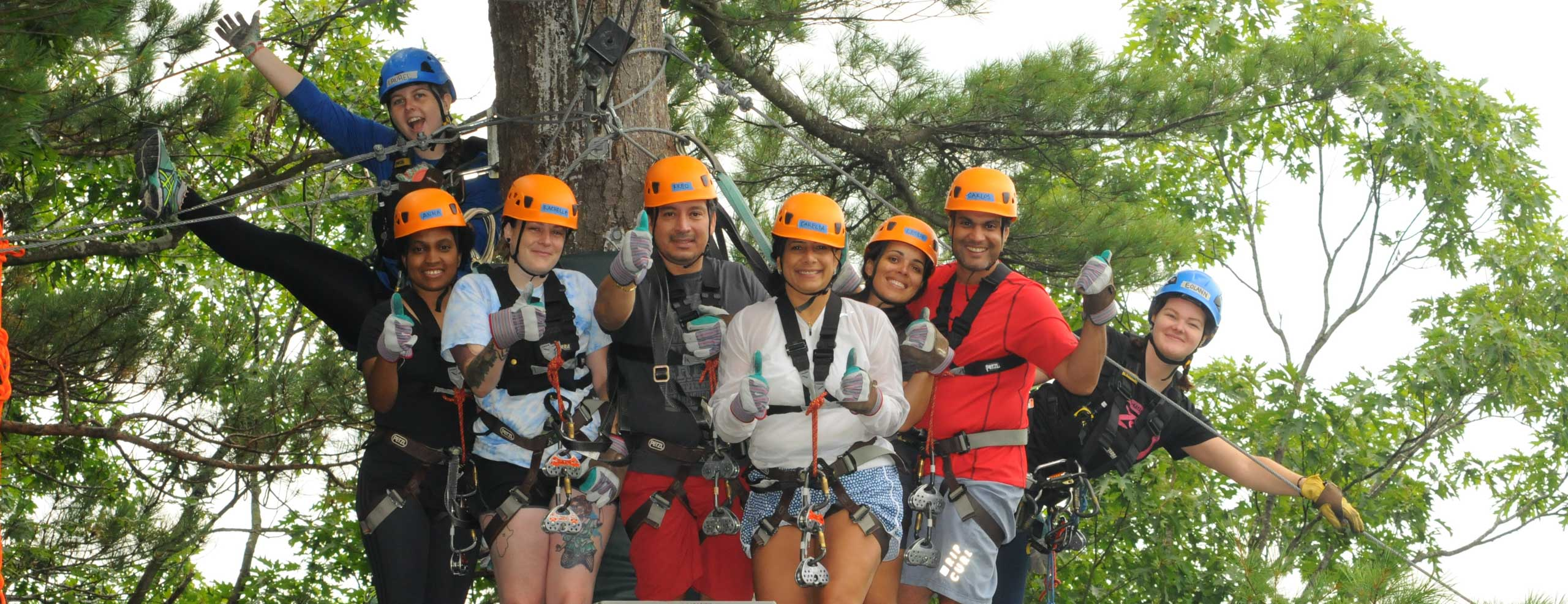 Zip group taking a group photo on a platform in the trees