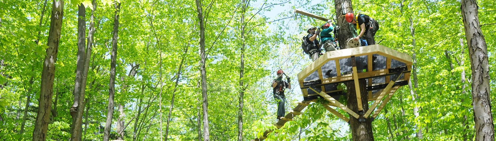 Group of zip liners standing on a platform high in the trees