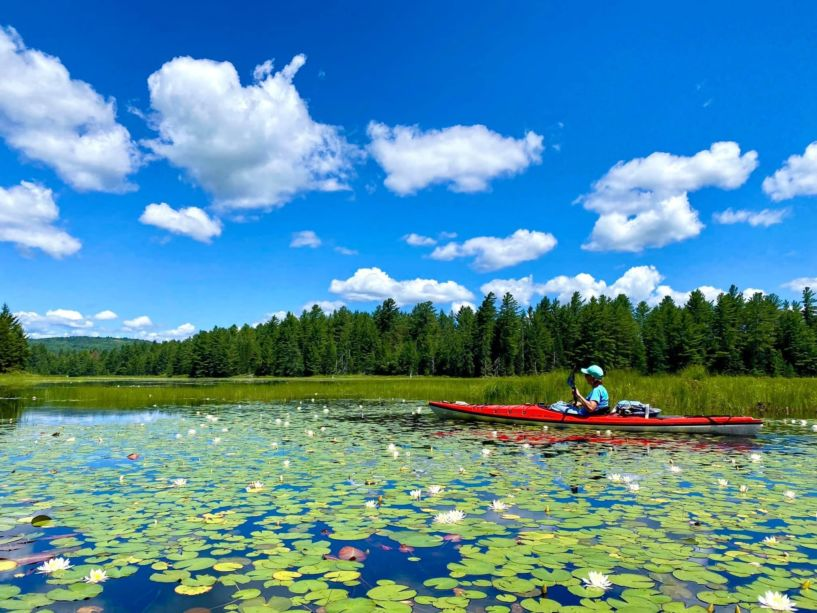 A paddler in a lake with many lilypads