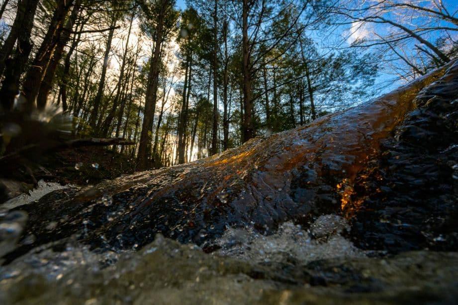 water splashing upon a tree log
