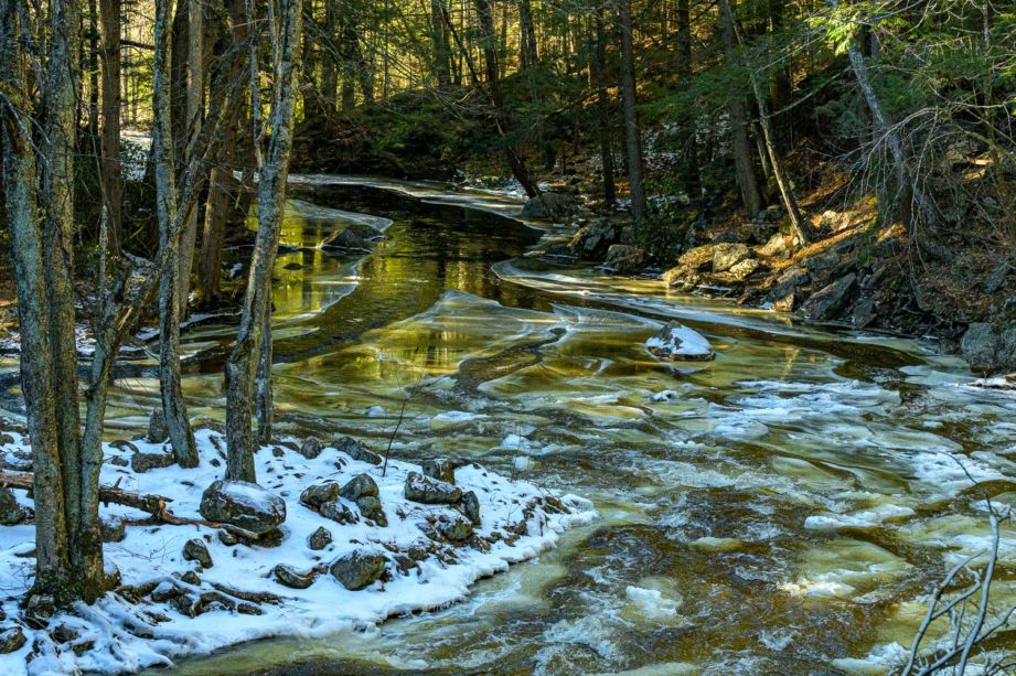 A river running along a forest with snow