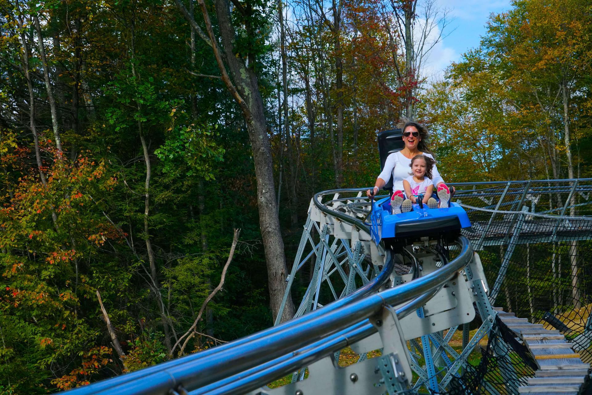 Mountain roller coaster